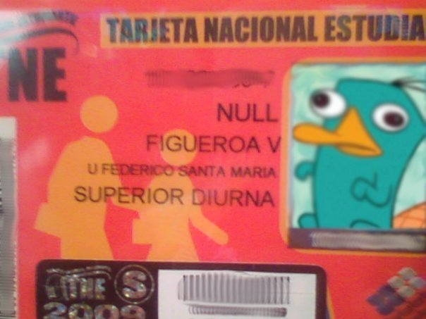 NULL Figueroa